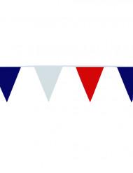 Viirinauha Ranskan lipun väreissä - 10 m