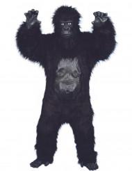 Miesten gorillapuku