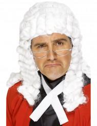 Tuomarin peruukki aikuiselle