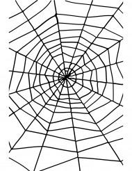 Koristeellinen hämähäkinverkko