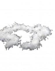 Valkoinen puuhka