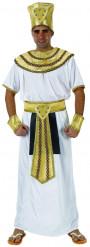 Eyptiläisen kuninkaan naamiaisasu aikuiselle