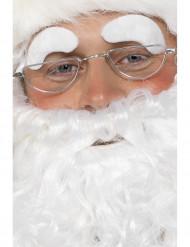 Joulupukki lasit