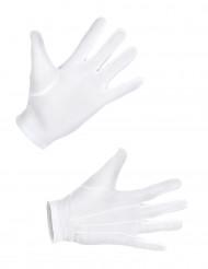 Valkoiset hansikkaat - Juhla asusteet aikuisille
