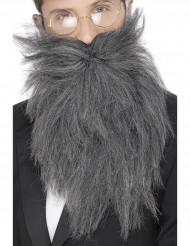 Pitkä harmaa parta aikuisille