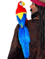 Merirosvon koristepapukaija