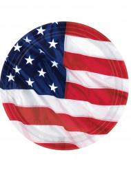 USA-pahvilautaset, 8 kpl