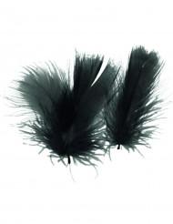 Mustat höyhenet, 5 g