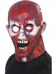 Ihmisen anatomia-naamari aikuiselle halloween