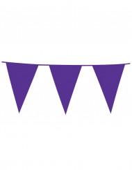 Violetti lippunauha, 10 m