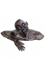 Zombien rintapatsas