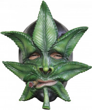 Cannabis-naamari