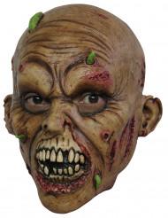 Aikuisten naamari zombin mädäntyneillä kasvoilla - Halloween