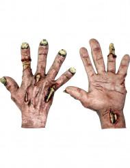 Aikuisten käsineet zombin käsillä - Halloween