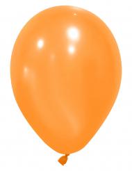 Oranssi ilmapallo 12kpl