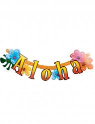 Hawaiji banneri