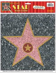 Seinäkoriste Walk of Fame -tähti