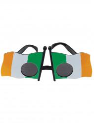 Irlannin lippu-lasit aikuiselle