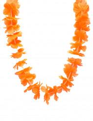 Oranssi havaijilainen lei