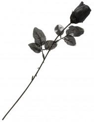 Musta ruusu