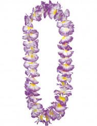 Violetti lei suoraan Havaijilta
