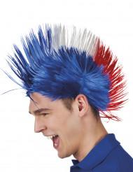 Punk-peruukki ranskan väreissä