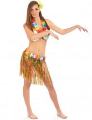 Hula-tanssijan naamiaisasusetti