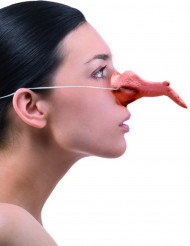 Noidan nenä