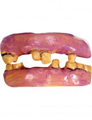 Vanhat hampaat
