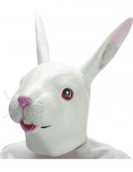 Lateksinen jäniksen naamari aikuiselle