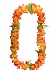 Hawaiji koru oranssi