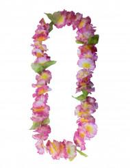 Hawaiji koru pinkki