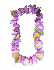 Hawaiji koru violetti