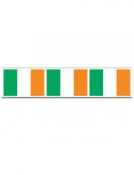 Köynnös Irlannin lippu