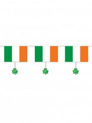Köynnös Irlannin lippu ja somisteet