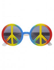 Hippin moniväriset aurinkolasit aikuisille