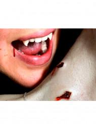 Aikuisten Premium maskeerauspakkaus -siirtokuvio vampyyrin puremalla