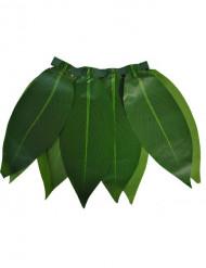 Hawaiji hame
