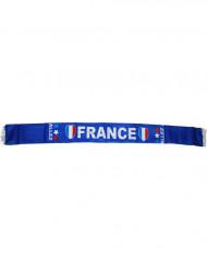 Penkkiurheilijan huivi Ranskan väreissä