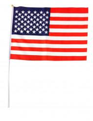 USA:n lippu 30 x 45 cm
