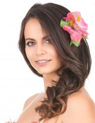 Hiussolki Vaaleanpunainen Havaijin kukka