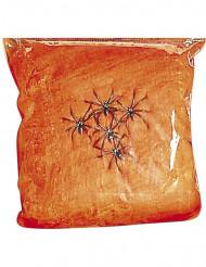 Oranssi hämähäkinseitti