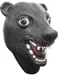 Musta karhunaamari aikuiselle
