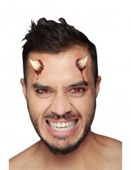 Paholaisen tekosarvet