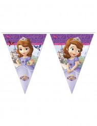 Prinsessa Sofia™ -lippunauha, 2,3 m