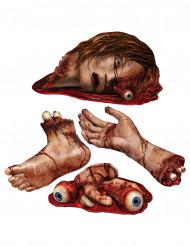 Kartonkikoristeet verisillä ruumiinosilla 4 kpl - Halloween
