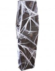 Hämähäkinseitin peittämä arkku