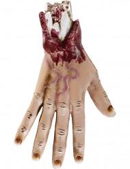 Ranteesta katkaistu verinen koristekäsi 25 cm - Halloween