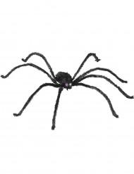 Hämähäkki valoilla