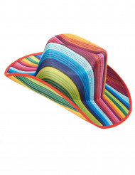 Värikäs raidallinen cowboy-hattu